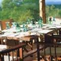 Tarangire Treetops Lodge 15