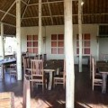 Tarangire Treetops Lodge 16
