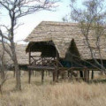 Kikoti Tented Lodge 2