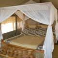 Kikoti Tented Lodge 3