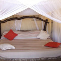 Kikoti Tented Lodge 5