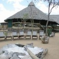 Kikoti Tented Lodge 14