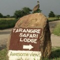 Tarangire Safari Lodge 3