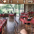 Tarangire Safari Lodge 26