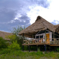 Lake Burunge Tented Lodge 5
