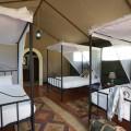 Kirurumu Tarangire Lodge 7