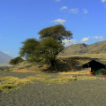 Lake Natron Tented Lodge 17
