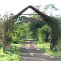 Karama Lodge2