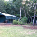 Kichwa Tembo Camp25