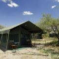 Ndutu Halisi Camp