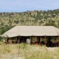 osupuko serengeti lodge 2