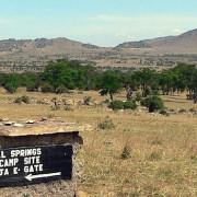 lobo valley norte serengeti 17