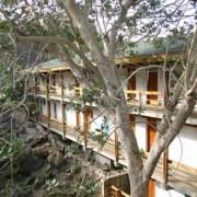 Lobo Wildlife Lodge tanzania 5
