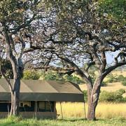 lemala mara river camp 4