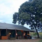 lemala mara river camp 5