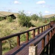 migration tented lodge tanzania 2