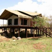 migration tented lodge tanzania 10
