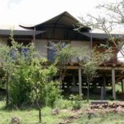 migration tented lodge tanzania 11
