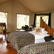 migration tented lodge tanzania 12