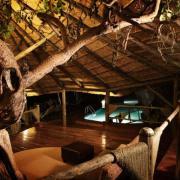 Serengeti Soroi Tented Lodge 21