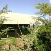 kirawira tented lodge 3
