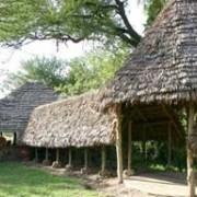 grumeti river tented lodge 4
