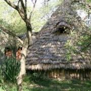 grumeti river tented lodge 5