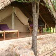 grumeti river tented lodge 6