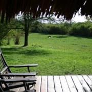 grumeti river tented lodge 9