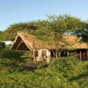 ikoma bush camp 4