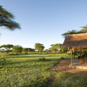 ikoma bush camp 6
