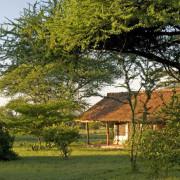 ikoma bush camp 7