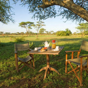 ikoma bush camp 8