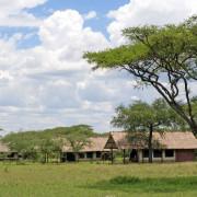 ikoma bush camp 12