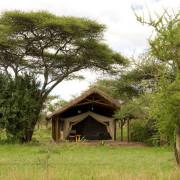 ikoma bush camp 13