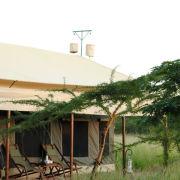 Serengeti Tanzania Bush Camp 3