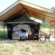 Serengeti Tanzania Bush Camp 4