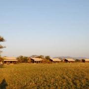 Serengeti Tanzania Bush Camp 11