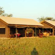 Serengeti Tanzania Bush Camp 14