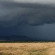 Reserva de Masai Mara6