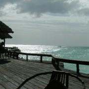 Mnarani Beach Cottages7