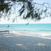 Pongwe Beach Hotel2