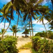 Pongwe Beach Hotel8