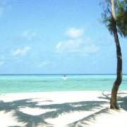 Pongwe Beach Hotel10