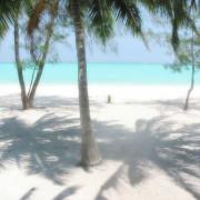 Pongwe Beach Hotel21