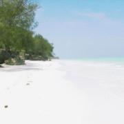 Pongwe Beach Hotel22