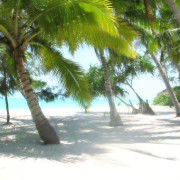 Pongwe Beach Hotel24