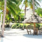 Pongwe Beach Hotel29