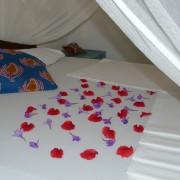 karamba resort12