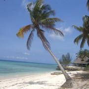 karamba resort22